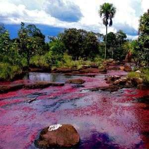 Planes Turisticos. Tours y Excursiones por Colombia.