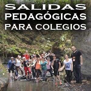 Salidas PEDAGOGICAS para colegios - Caminatas ECOLOGICAS Educativas